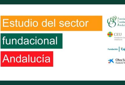estudio fundaciones_AFA