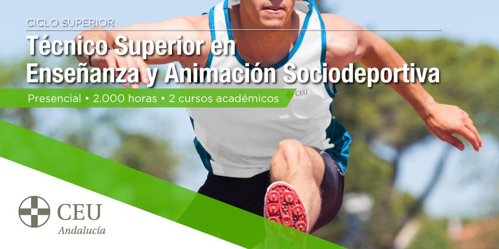 Ensenanza-Animacion-Sociodeportiva-RRSS-twitter