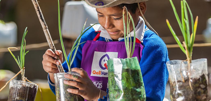 Un pequeño participa en un taller de plantación organizado por PNUD Perú y la FAO en Ayacucho, Perú. Foto: PNUDPerú