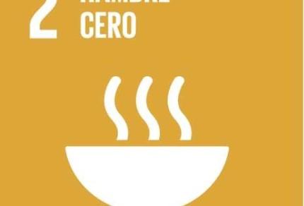 hambre-cero-ceu